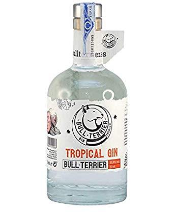 bull terrier tropical gin